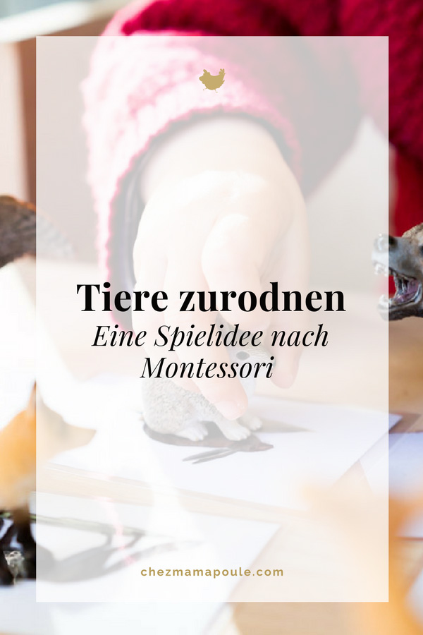 Montessori Tiere zurodnen DIY www.chezmamapoule.com-10