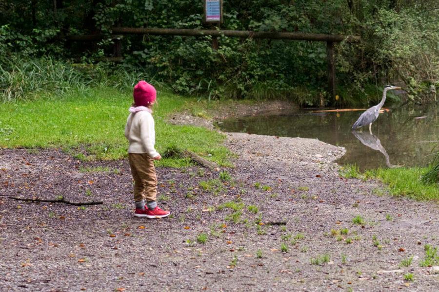 Kind-Wald-Spiel-Ellen-Girod-www.chezmamapoule.com-5