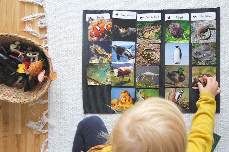 Was-ist-Montessori-Eltern-vom-Mars-Chezmamapoule-3