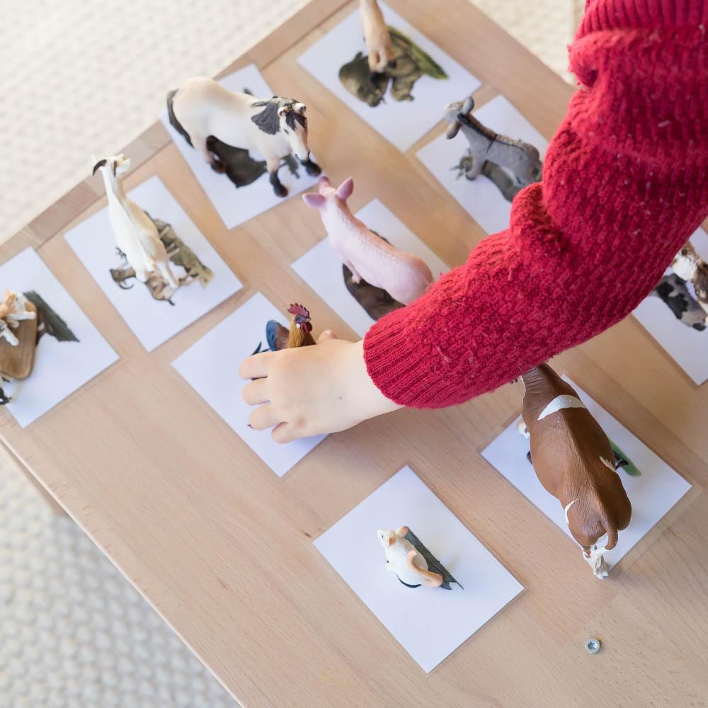 Montessori Diy Tiere Zuordnen Chez Mama Poule