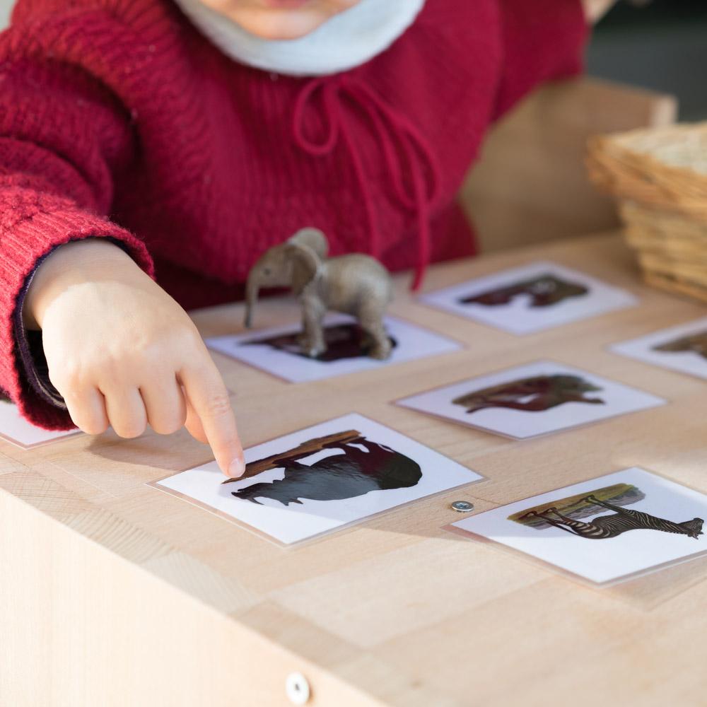 Montessori Tiere zurodnen DIY www.chezmamapoule.com-6