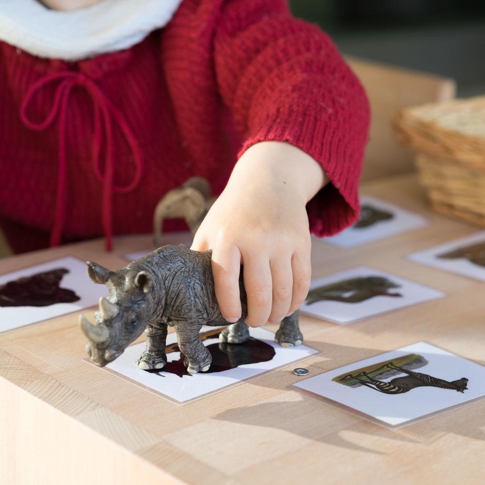 Montessori Tiere zurodnen DIY www.chezmamapoule.com-7