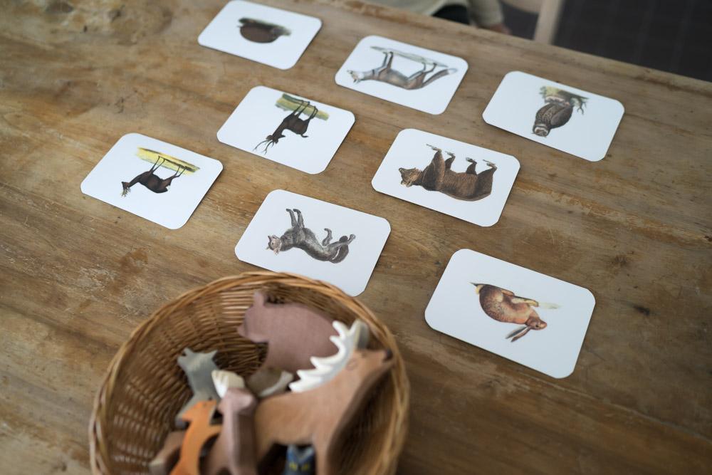 Tiere zuordnen Montessori DIY mit Ostheimer Tieren www.chezmamapoule.com-38