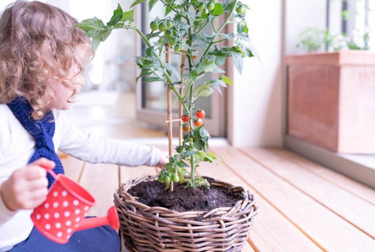 Gärtnern mit Kindern: Eine einfache Anleitung für Anfänger, so gelingt euer erstser Bio-Balkon, Urban Farm oder Garten mit Kleinkindern