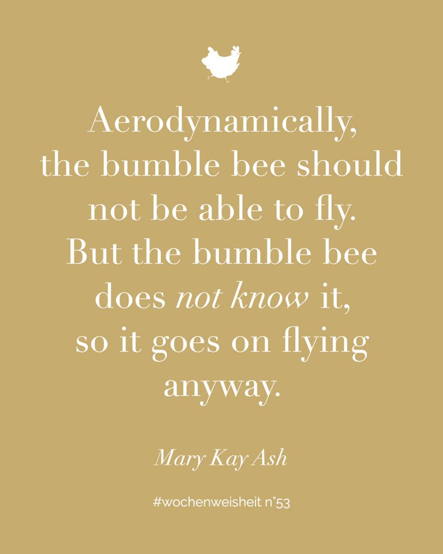 Aerodynamically, the bumble bee should not be able to fly... So viel zur Theorie. Doch wie sieht die Praxis aus? Wie geht das, unseren Kindern zu vertrauen? Lesen auf: www.chezmamapoule.com  #zitate #elternsein #herzenssuchle #attachmentparenting #unerzogen #montessori #mamaweisheit #familie #kinder #lebenmitkind #kleinkind #motivation #elternmotivation #inspiration #quote #wochenweisheit #elternweisheit #bindungsorientiert #zitateundsprüche