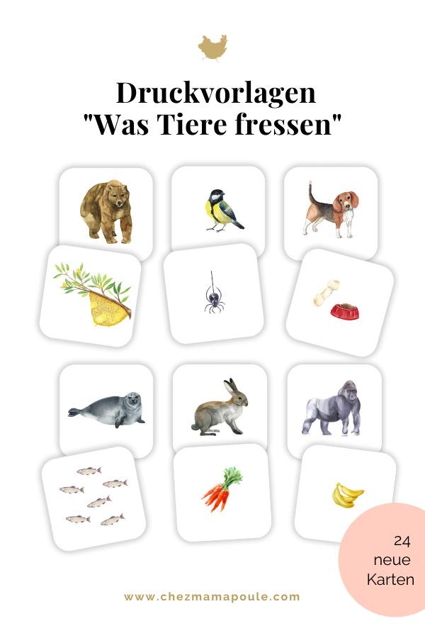Druckvorlagen für Kinder: Was fressen die Tiere?